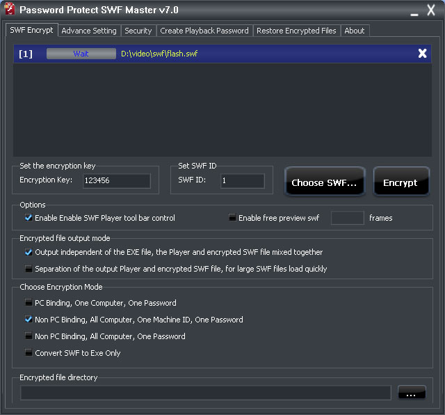 Password Protect SWF Master Setting User Interface